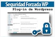 Federico Aura – Seguridad Forzada WP